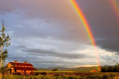 rainbowonlove