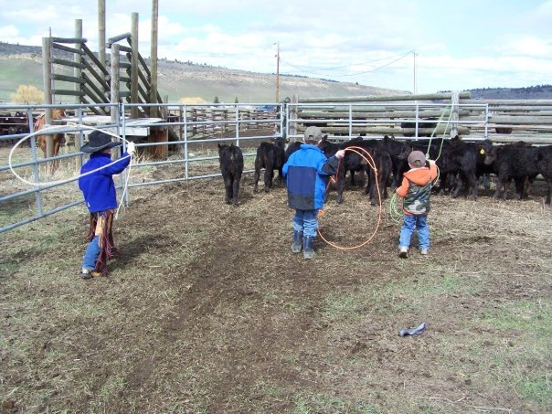 the-boys-roping-their-first-calf