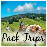 packtrips