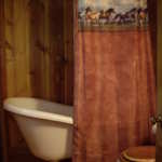 claw foot tub and horse-themed shower curtain